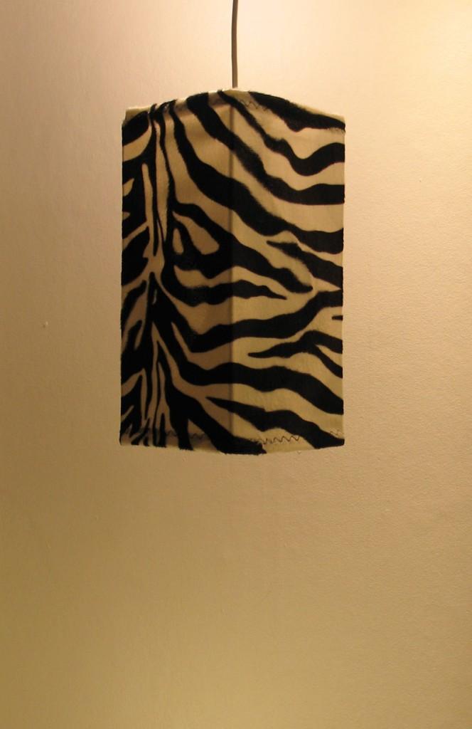 lo_zebra_fir_off