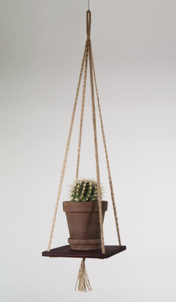 Hængende hylde i bejdset krydsfiner, knyttet snor med kaktus og brun potte